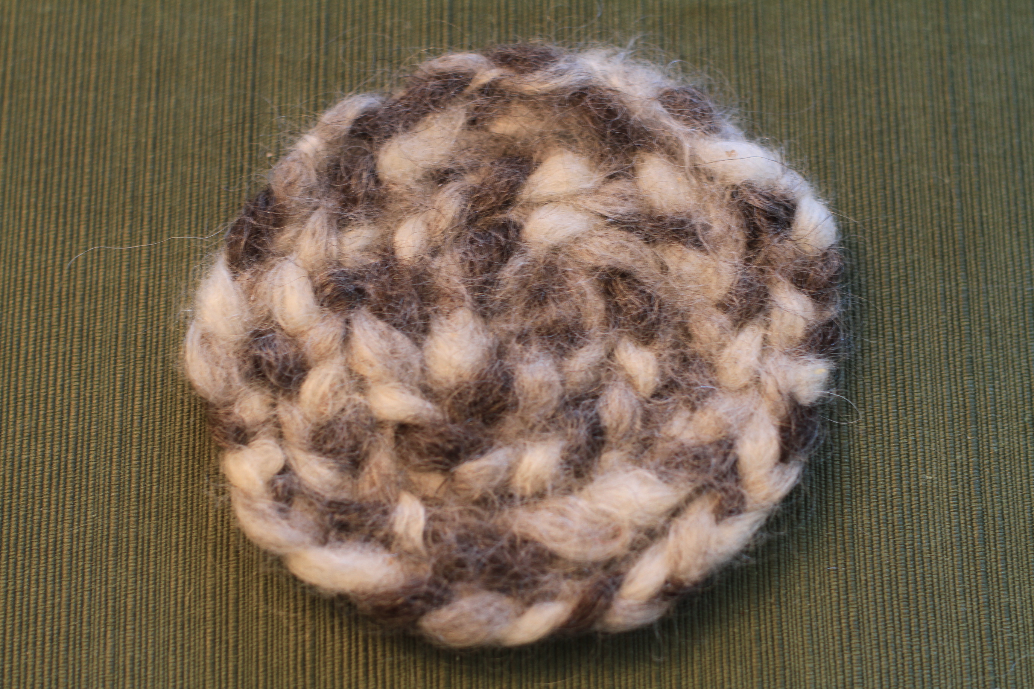 Coaster from DWF Roving