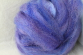 Roving Periwinkle