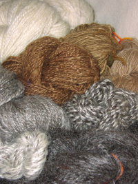 Yarns - Natural and Walnut Dyed